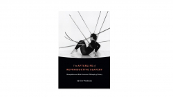 Alys Weinbaum book The Afterlife of Reproductive Slavery